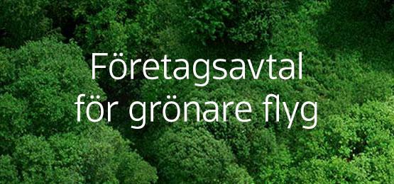Företagsavtal för grönare flyg